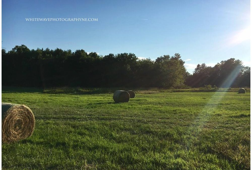 NH Fall Mini Session | Limited Edition Sessions at Vernon Family Farm