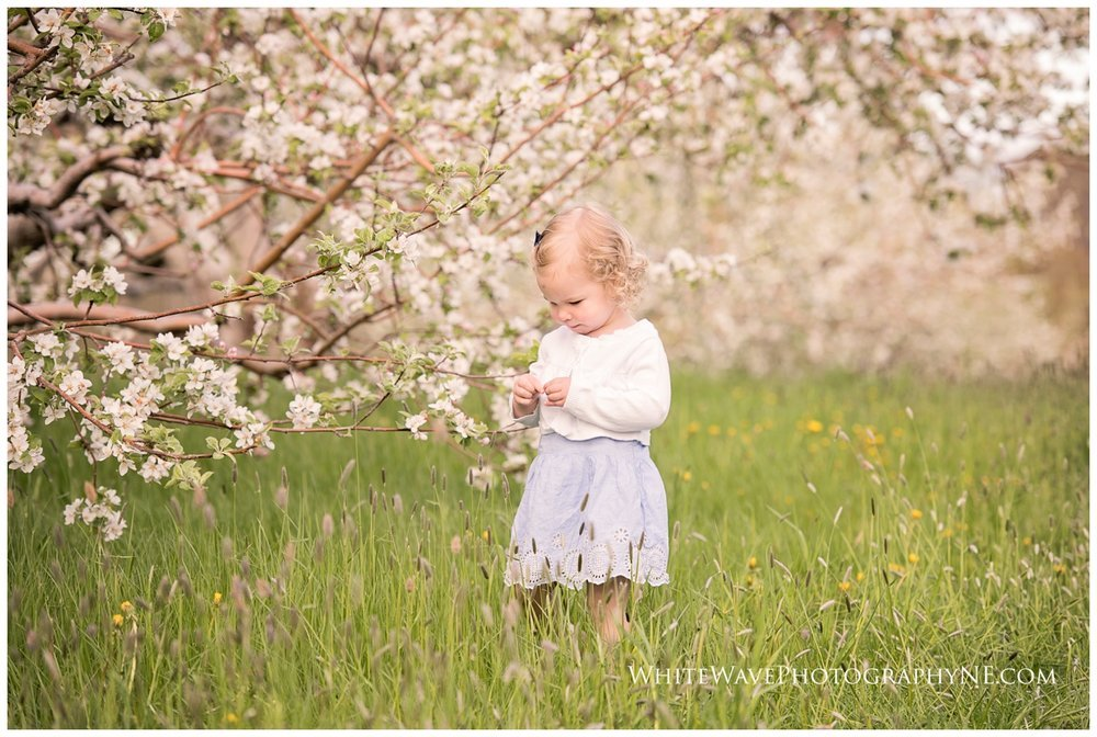 NH-Children-Photographer, Family-Photography-NH, Mini-Sessions-Photography, White-Wave-Photography