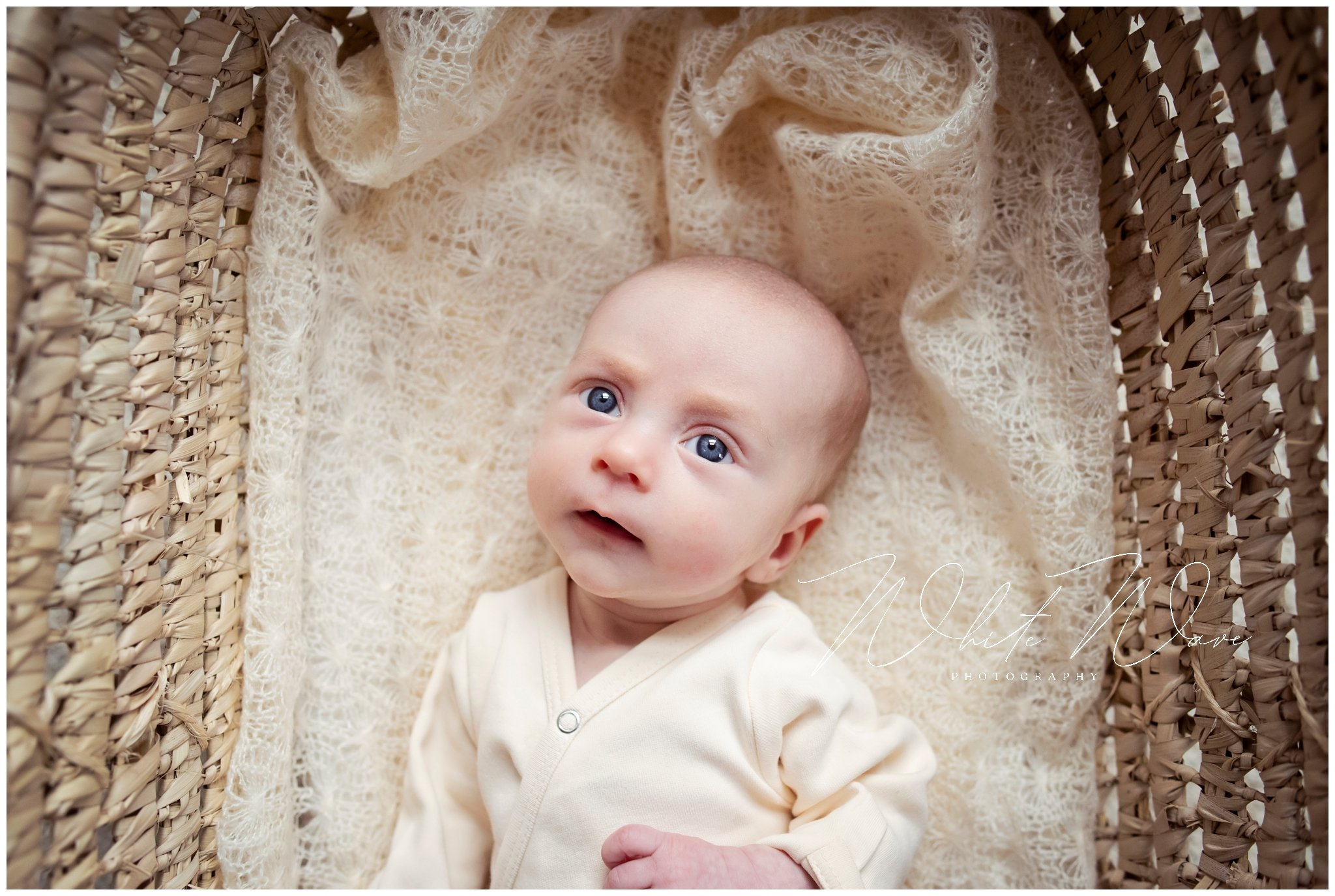 your newborn photographer