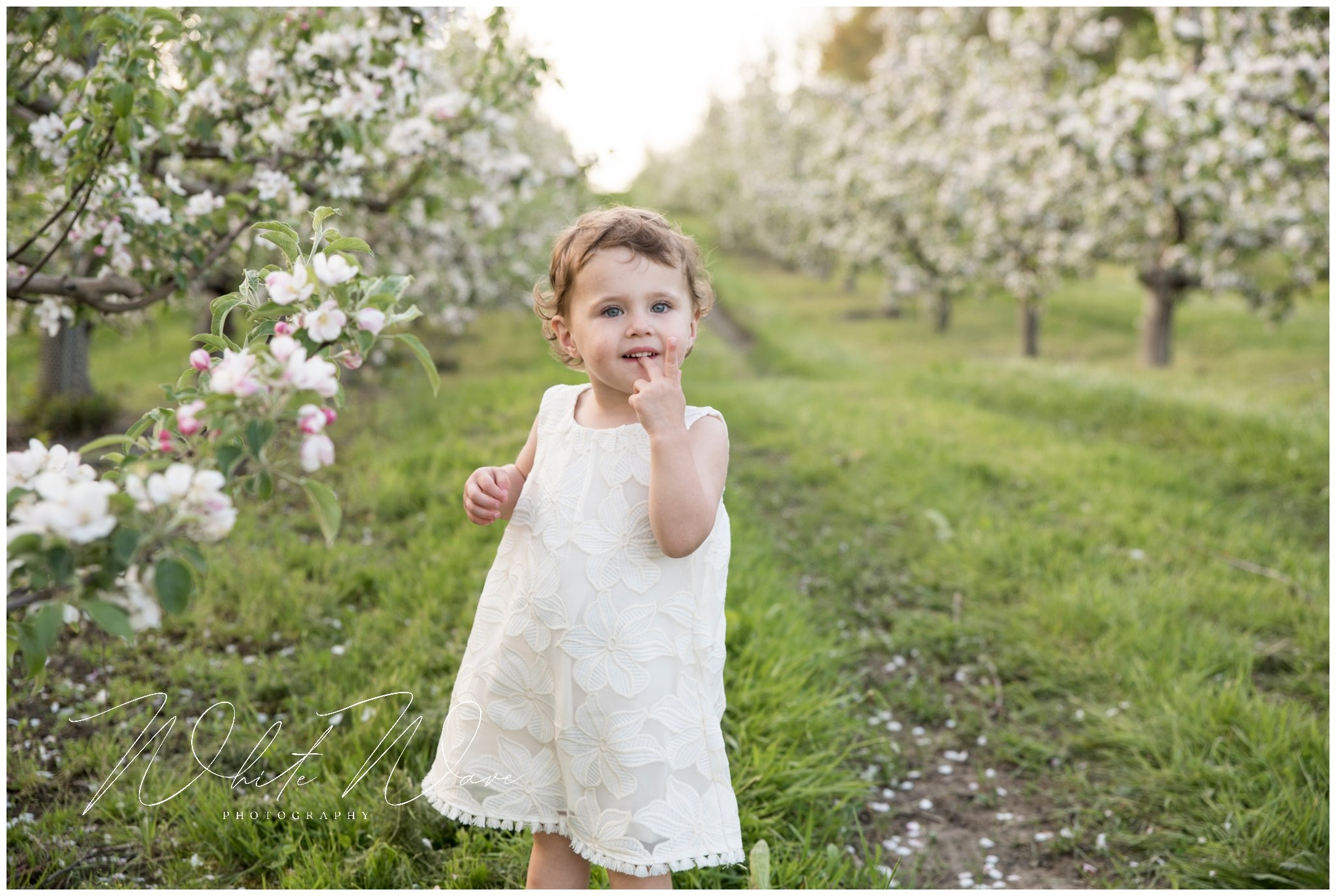 spring family portrait session with photographer jennie bishop